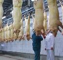 Bundeling grootslagers in Meating XL