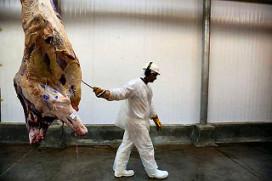 Vleesexporteurs moeten over op CLIENT