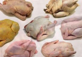 Rusland verhoogt export pluimveevlees
