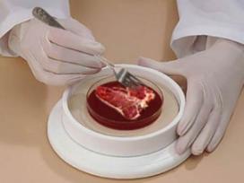 Lab-hamburger kost kwart miljoen
