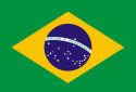 'Brazilië over tien jaar dé vleesgigant