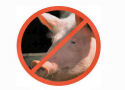Oproep tot boycot van Vion
