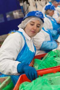 De volledige productie van duurzaamheidsconcepten van Vion - De Groene Weg en Good Farming Star - vindt in Groenlo plaats.