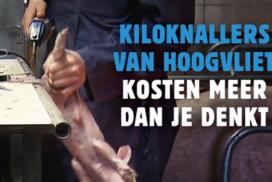 Wakker Dier pakt kiloknallers bij Hoogvliet aan