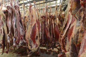 Slachthuizen krijgen meer boetes voor verontreinigd vlees