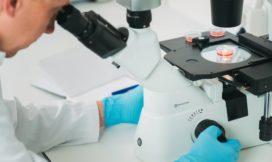 Miljoeneninvestering voor Nederlandse 'cell-based meat'-start-up