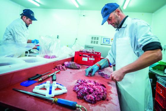 Slagerij Kusters heeft 50 medewerkers. Foto: Marcel van Hoorn.