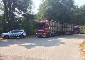 Extra controle veetransport verlengd tot en met zondag 28 juli
