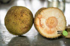 Bolscher start met verkoop vegan jackfruit producten